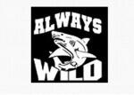 Portfele Always Wild