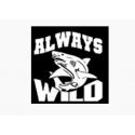 Always Wild
